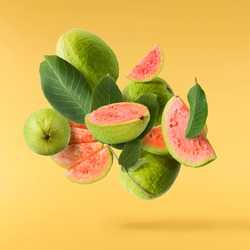Fresh ripe whole and halved guava with leaves falling in the air isolated on yellow illuminating background. Zero gravity or levitation conception. High quality resolution image