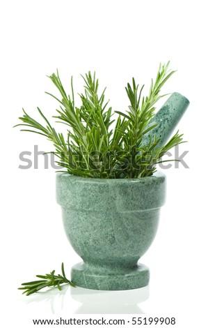 Fresh rosemary herb in mortar with pestle on white background