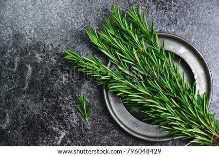 Fresh rosemary herb on the dark background. Top view rosemary