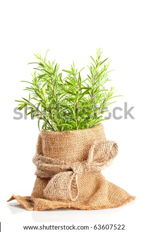 Fresh rosemary herbs in hessian sacking on white background