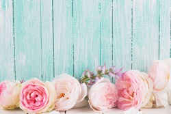 Fresh roses on  wooden background. Place for text.