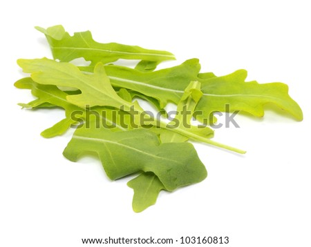 fresh rucola leaves on a white background