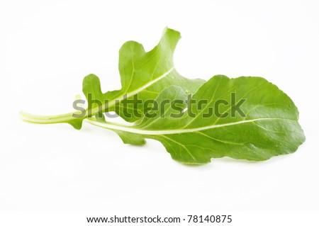 Fresh rucola leaves on white background