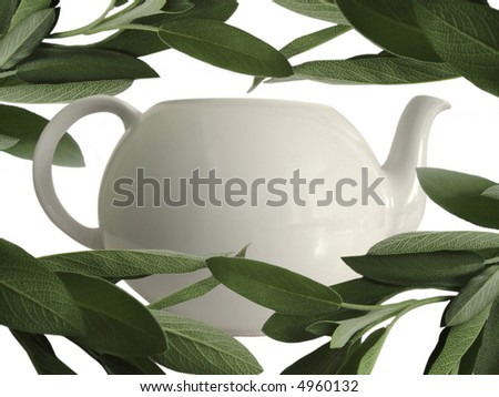 fresh sage and teapot #4960132