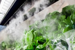 Fresh salad at the supermarked sprayed with mist water from the mini nozzles to keep it more appealing.