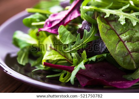 Fresh salad plate with mixed greens (arugula, mesclun, mache) on dark wooden background close up. Healthy food. Green meal.