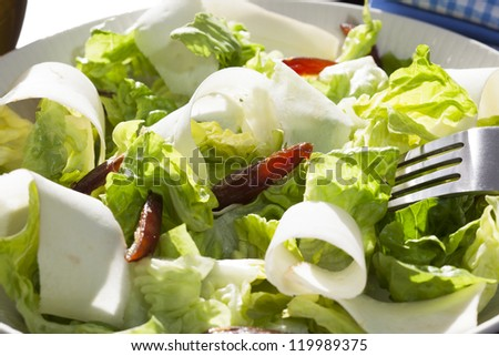Fresh salad with lettuce, dates and parsnips, or jicama