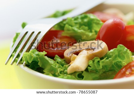 fresh salad with mushroom lettuce and tomato