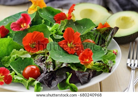 Fresh salad with Nasturtium flowers, cherry tomatoes and avocado. Selective focus with extreme shallow depth of field.   #680240968