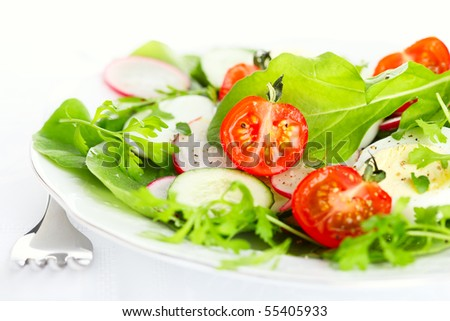 Fresh salad with radishes, tomatoes and cucumbers
