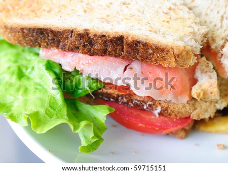Fresh Salmon Sandwich and French fries