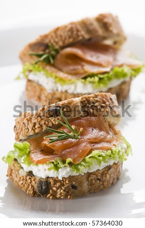 Fresh salmon sandwich on a plate close up