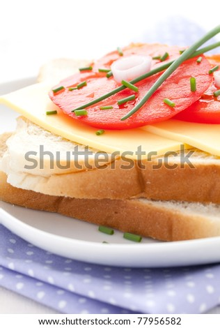 fresh sandwich with cheese and tomato