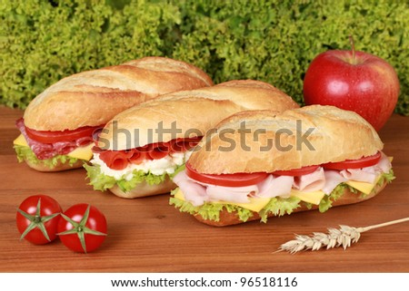 Fresh sandwiches with ham, salami and smoked salmon