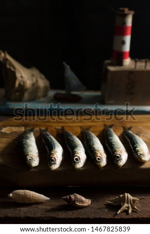 fresh  sardines freshly caught from the sea