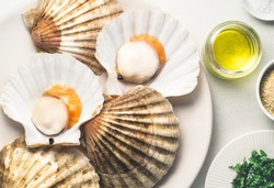 Fresh scallops for a baked recipe with parsley, dry bread and olive oil. Mediterranean seafood recipes