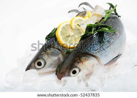 Fresh Sea Bass on Ice
