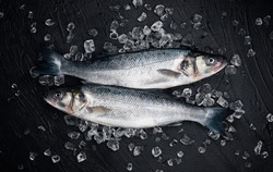 Fresh seabass fish on ice on black stone background, top view