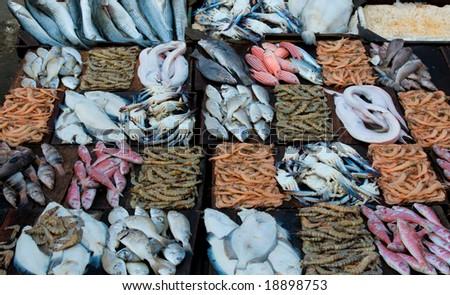 Groomer seafood fresh seafood fresh fish seafood market for Fresh fish market tampa