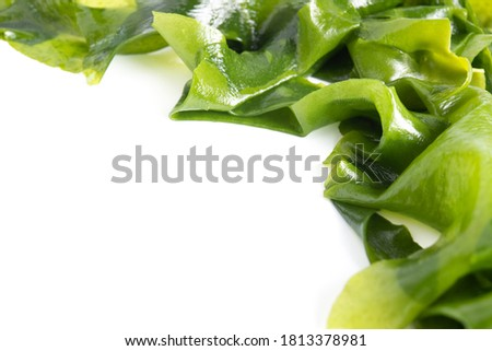 Fresh seaweed wakame isolated on white background with copy space. Japanese food Сток-фото ©
