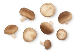 Fresh Shiitake mushroom isolated on white background with clipping path. Top view. Flat lay