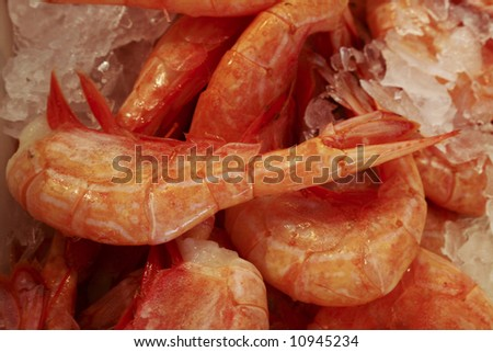 Fresh shrimp for sale at Pike Place Market is Seattle, Washington - stock photo