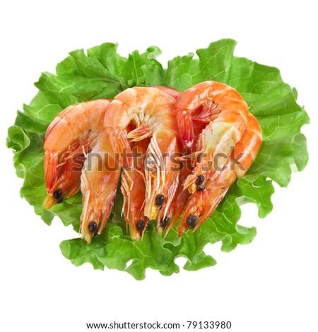 Fresh shrimp on a salad lettuce isolated on white - stock photo