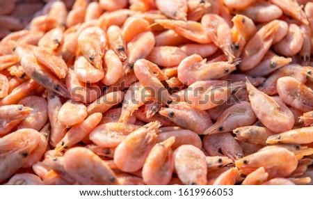 Fresh shrimp with fresh seeds and fresh seafood