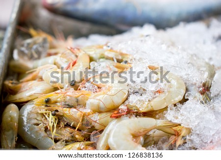 Fresh shrimps with ice.