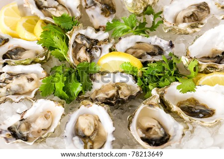 Fresh Shucked Oysters on a bed of crushed ice.