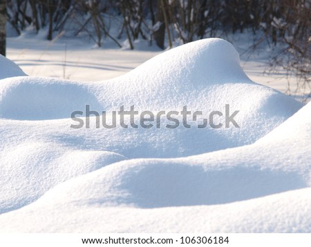 Fresh snow cover, at winter