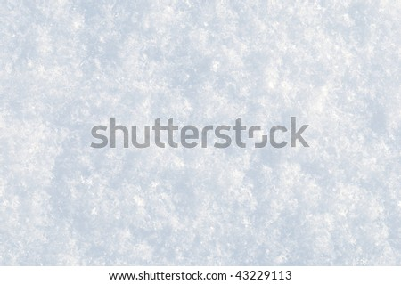 Fresh snow surface