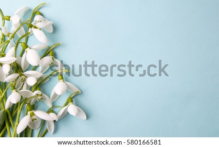 Photo of  Fresh snowdrops on blue background with place for text