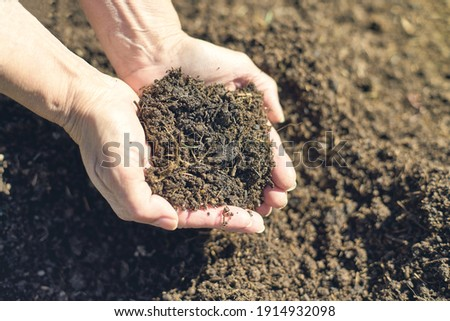Fresh soil in two hands with sunlight. Recycling trash to compost. Foto stock ©
