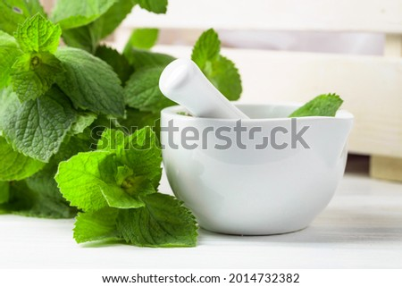 Fresh spearmint leaves and white ceramic mortar. Aromatherapy, spa, and herbal medicine ingredients. Foto stock ©