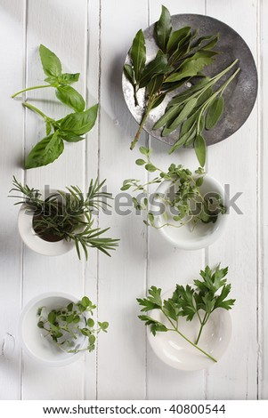 fresh spices and herbs are sweet basil, rosemary, oregano, marjoram, parsley are on a red cotton mat.