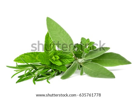 Fresh spices and herbs isolated on white background #635761778