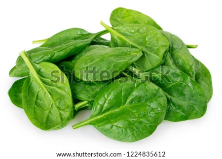 fresh spinach isolated on white background Сток-фото ©