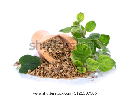 Fresh sprig of oregano and dry oregano spice isolated on white background #1121507306