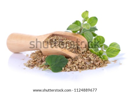 Fresh sprig of oregano and dry oregano spice isolated on white background #1124889677