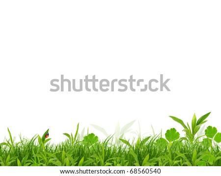 Fresh spring background isolated on white background