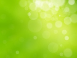 Fresh Spring bokeh background