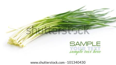 Fresh spring garlic on white background