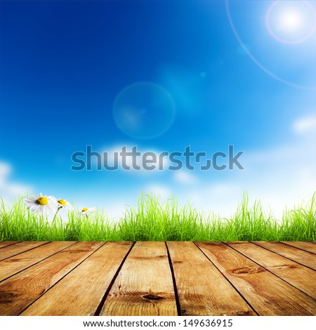 Fresh spring green grass and white flower camomile with blue bokeh and sunlight and wood floor. Natural background