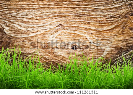 Fresh spring green grass over wood background