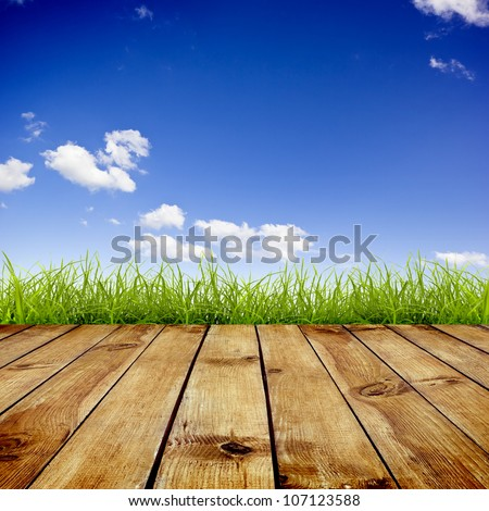 Fresh spring green grass with blue sky and wood floor background