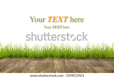 Fresh spring green grass with wood floor over white background