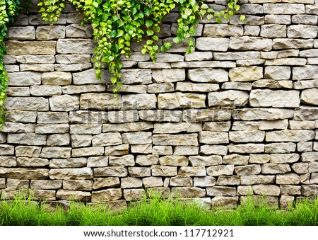 Fresh spring green leaves plant over brick wall background