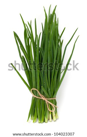 fresh spring onion tied standing on white background