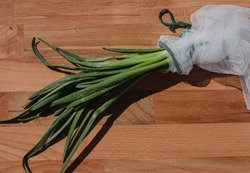 Fresh spring onions on brown wooden background Grean onion with water drops Onions in reusable white shopper bag Fresh and juicy spring greens Concept of healthy food, diet, vegetarian food, farmers
